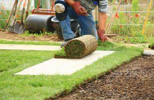 Преимущества рулонного газона в ландшафтном дизайне
